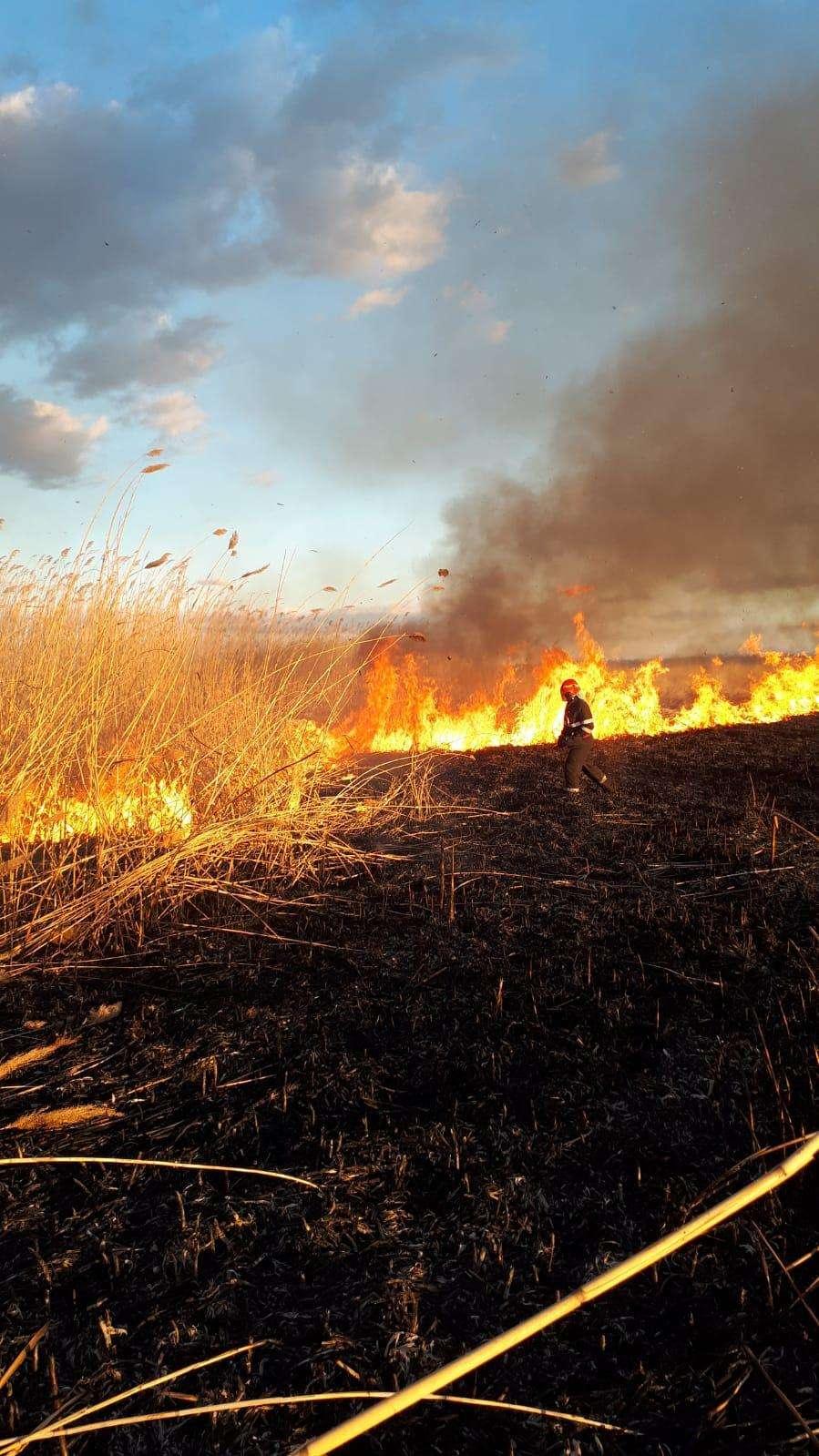 Ard câmpurile! Inconștiența duce la dezastru!