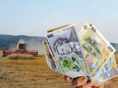 Anunț important pentru români. De astăzi se plătește ajutorul de stat în sectorul creșterii animalelor
