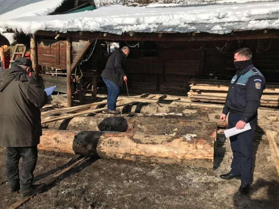 Garda Forestieră i-a călcat pragul! Amendă pentru vânzarea lemnului fără documente legale!