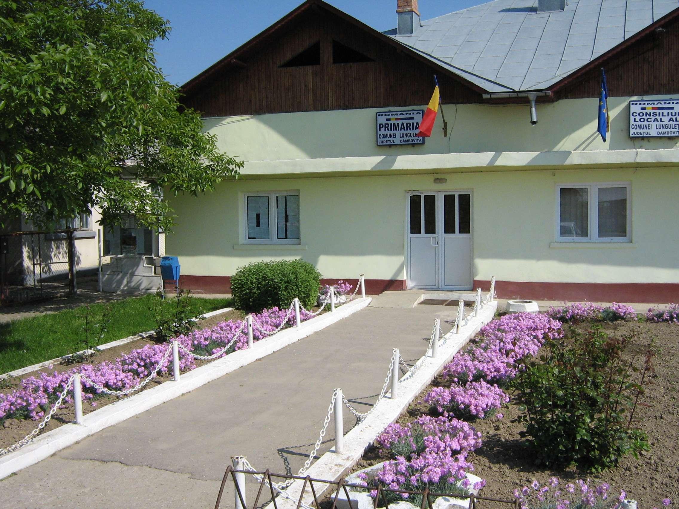 Prefectura Dâmbovița face LUMINĂ în cazul de la Lungulețu