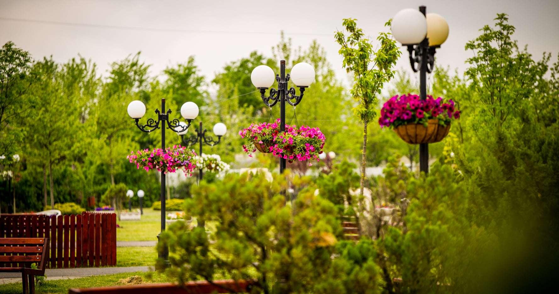 Primăria Titu desfășoară o amplă acțiune de plantare de flori și de arbori în oraș